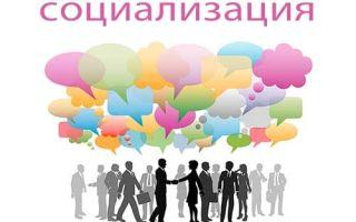 Социализация — это то, что позволит вам жить в гармонии с миром