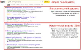 Как продвигать сайт — покупать контекстную рекламу или использовать seo для попадания в органическую выдачу