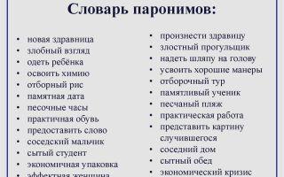 Что такое паронимы — примеры предложений из словаря паронимов