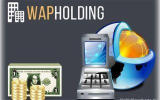 Как заработать на мобильном трафике своего сайта в wapholding