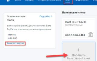 Paypal — как им пользоваться, а так же как выводить деньги в россии