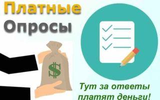 Платный опрос — заработок на опросах с выводом денег