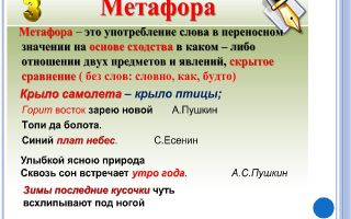 Метафора — новое значение старых слов и примеры использования